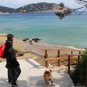 Ibiza con perro