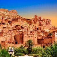 Marruecos con perro