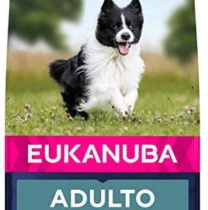 Eukanuba Alimento seco para perros adultos de razas pequeñas y