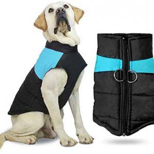 Abrigo De Invierno para Perro,Ropa para Mascotas Invierno,Invierno Ropa para