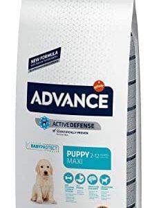 Advance Advance Pienso para Perro Maxi Puppy con Pollo -