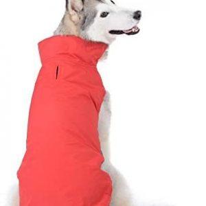 Bwiv Abrigos para Perros de Invierno Chaqueta Impermeable Forrado de