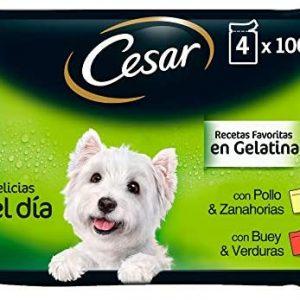 Cesar Comida Húmeda para Perro, Selección Carnes Mixtas en Gelatina,