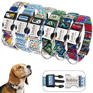 Didog - Collares personalizados para perros con hebilla de liberación