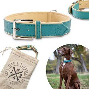 Jack & Russell Collar de Perro de Cuero de Primera