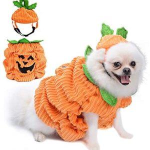 Legendog Disfraz de Halloween para Perros, Disfraz de Calabaza para