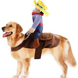 N / A Disfraces De Halloween del Perro, Mascota Upstraight