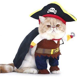 PTN Gato y Perro Caribe Pirata Disfraz, Ropa para Mascotas,
