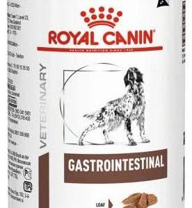 Royal Canin Gastrointestinal- Comida para perros de edad adulta, 400