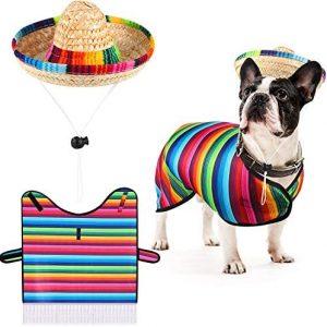 Sombrero de Perro Poncho de Sarape Disfraz de Perro Divertido
