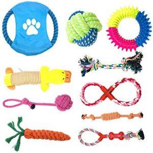 TIYUPA Juego de Juguetes para Perros, 10 Piezas Juguetes de