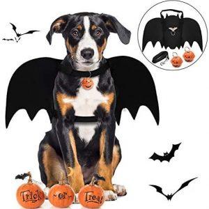 Alas de Perro, Disfraz de Perro de murciélago de Halloween/alas