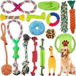 Amzeeniu Juguetes para Perros,16piezas Juguete para Morder para Perro,Durable Masticable