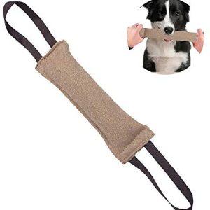 EONAZE Mordedor Perro, Juguetes para Perros de Entrenamiento, Juguete Interactivo