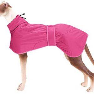 Geyecete Abrigo de invierno para perro con forro polar cálido,