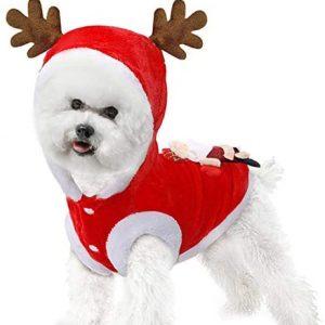 Goldmik Disfraz de perro de Papá Noel para Navidad, divertido