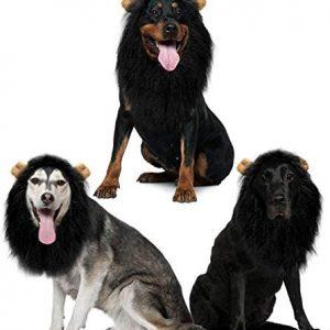 Jemma - Peluca de melena de león para perro, realista
