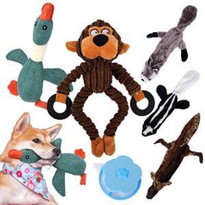 MyfatBOSS Juguete para Perros - 5 Piezas de Juguetes de