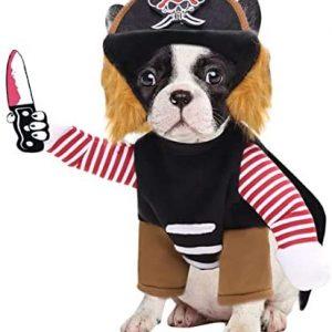 N / A Mascota El Perro De Trajes De La