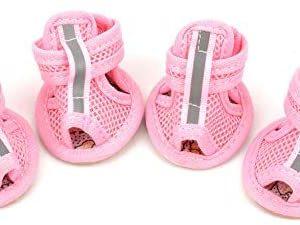 Ranphy - Zapatos para perro pequeño, macho / hembra, color